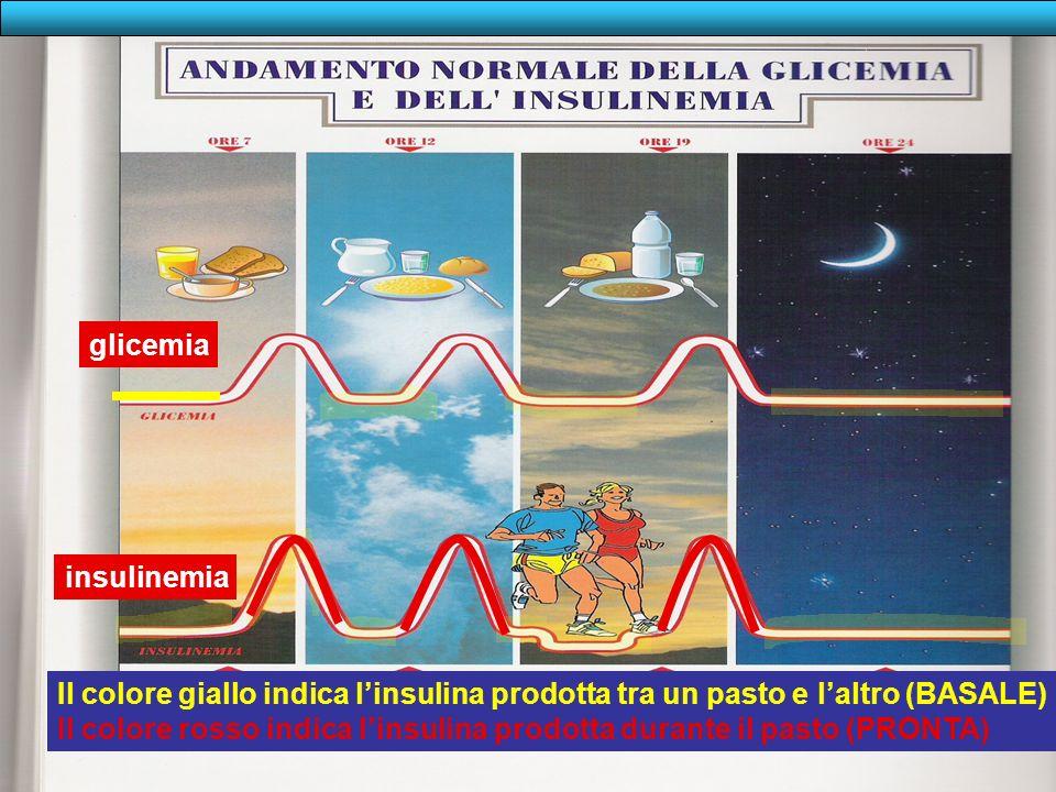 PREMESSA 2: TIPI DINSULINA Come noterete nella diapositiva successiva nel soggetto non diabetico la glicemia è mantenuta a livello normale con una pro