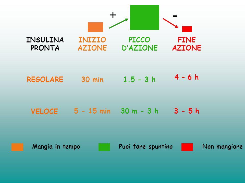 0 2 4 6 8 INSULINAINSULINA poca tanta INSULINA VELOCE (Humalog - Novorapid) PASTO SNACK Insulina Basale PANCREAS ATTIVO Molta insulina: pasto principa