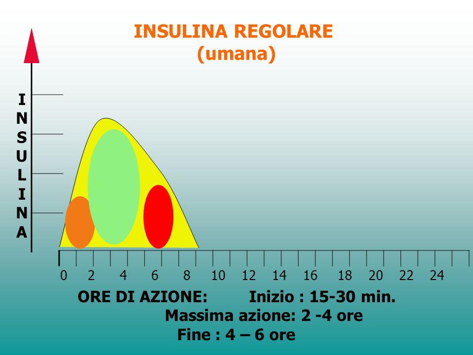 INSULINA TIPO INIZIO AZIONE PICCO DAZIONE FINE AZIONE REGOLARE30 m1.5 - 3 h 4 – 6 h 5 - 15 m30 m - 3 h3 - 5 h INTERMEDIA1 -3 h4 - 8 h12 - 16 h + - VEL