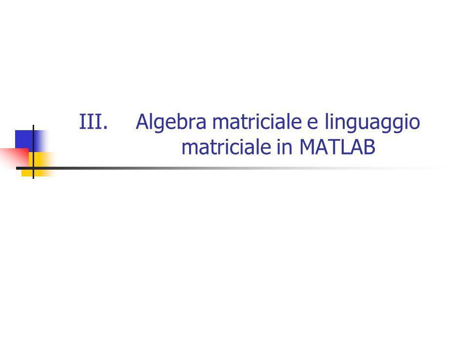 III.Algebra matriciale e linguaggio matriciale in MATLAB