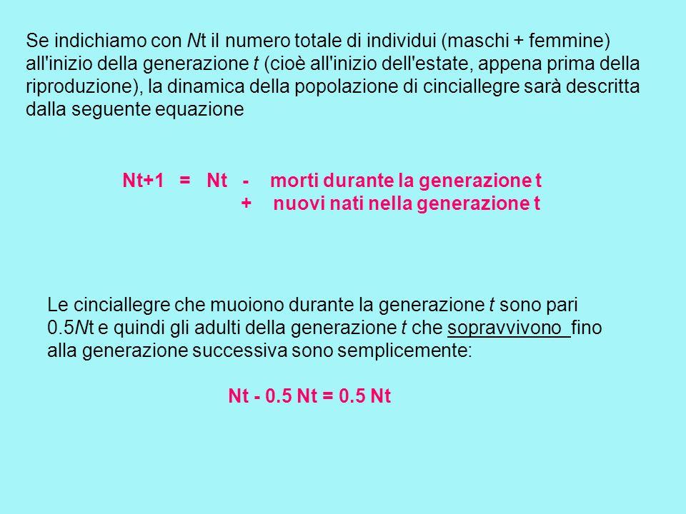 Se indichiamo con Nt il numero totale di individui (maschi + femmine) all'inizio della generazione t (cioè all'inizio dell'estate, appena prima della