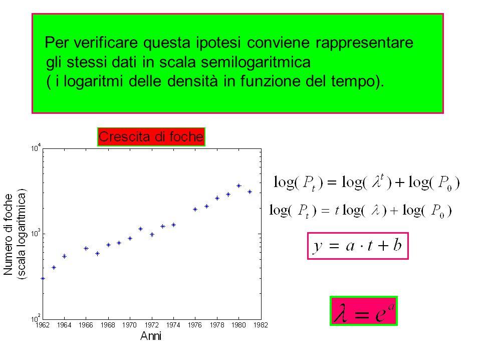 Per verificare questa ipotesi conviene rappresentare gli stessi dati in scala semilogaritmica ( i logaritmi delle densità in funzione del tempo).