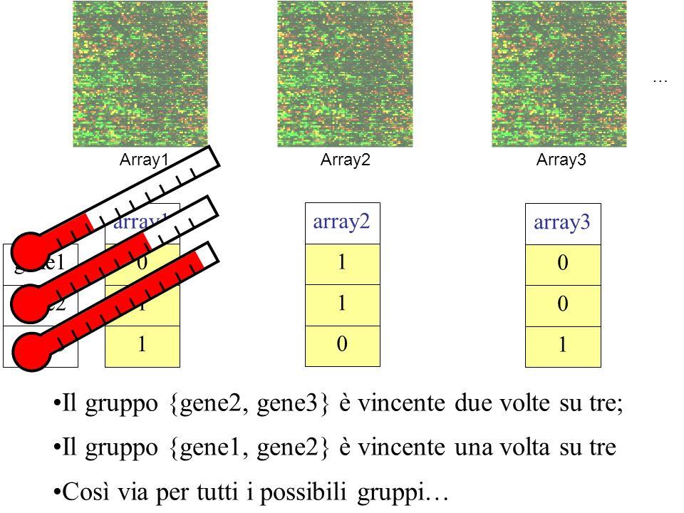 Il gruppo {gene2, gene3} è vincente due volte su tre; Il gruppo {gene1, gene2} è vincente una volta su tre Così via per tutti i possibili gruppi… Array1Array2Array3 gene3 gene2 gene1 1 1 0 array1 0 1 1 array2 1 0 0 array3 …