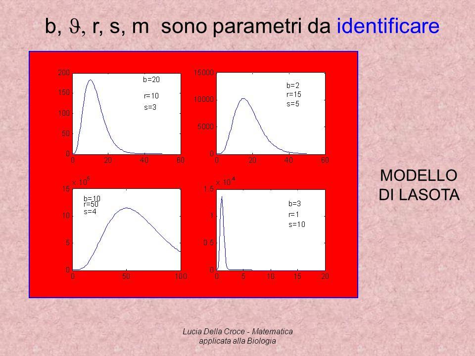 b, r, s, m sono parametri da identificare MODELLO DI LASOTA Lucia Della Croce - Matematica applicata alla Biologia