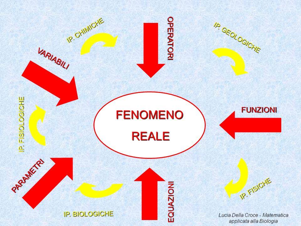 FENOMENOREALE VARIABILI OPERATORI FUNZIONI EQUAZIONI PARAMETRI IP. CHIMICHE IP. GEOLOGICHE IP. FISICHE IP. BIOLOGICHE IP. FISIOLOGICHE Lucia Della Cro
