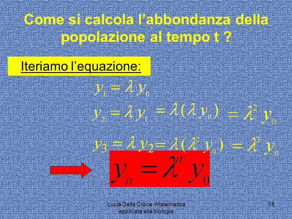 Come si calcola labbondanza della popolazione al tempo t ? Iteriamo lequazione: 18Lucia Della Croce -Matematica applicata alla biologia