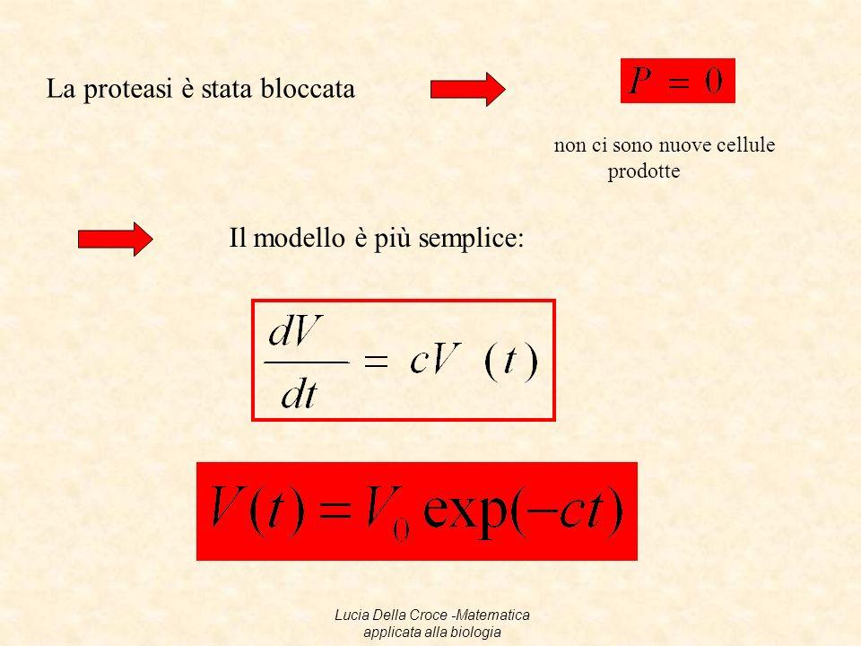 Il modello è lineare 17Lucia Della Croce -Matematica applicata alla biologia