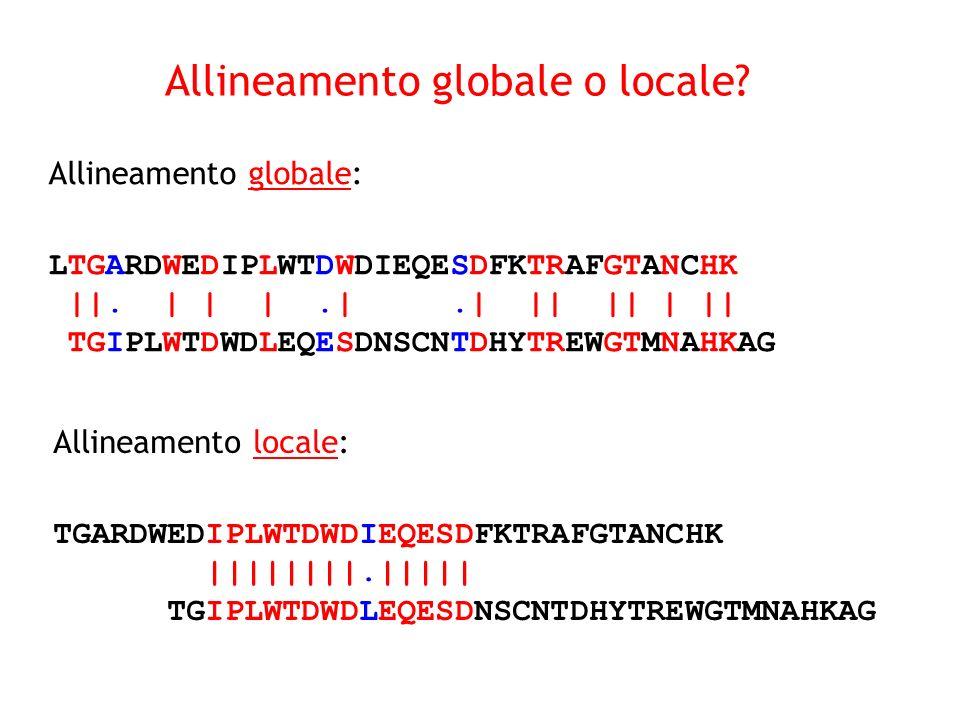 Allineamento globale: LTGARDWEDIPLWTDWDIEQESDFKTRAFGTANCHK ||. | | |.|.| || || | || TGIPLWTDWDLEQESDNSCNTDHYTREWGTMNAHKAG Allineamento locale: TGARDWE
