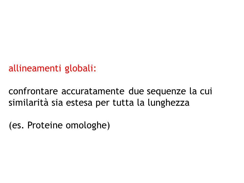 allineamenti globali: confrontare accuratamente due sequenze la cui similarità sia estesa per tutta la lunghezza (es. Proteine omologhe)
