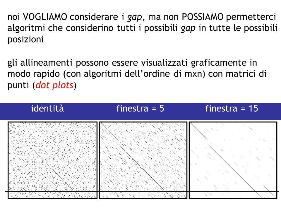 gli allineamenti possono essere visualizzati graficamente in modo rapido (con algoritmi dellordine di mxn) con matrici di punti (dot plots) noi VOGLIA