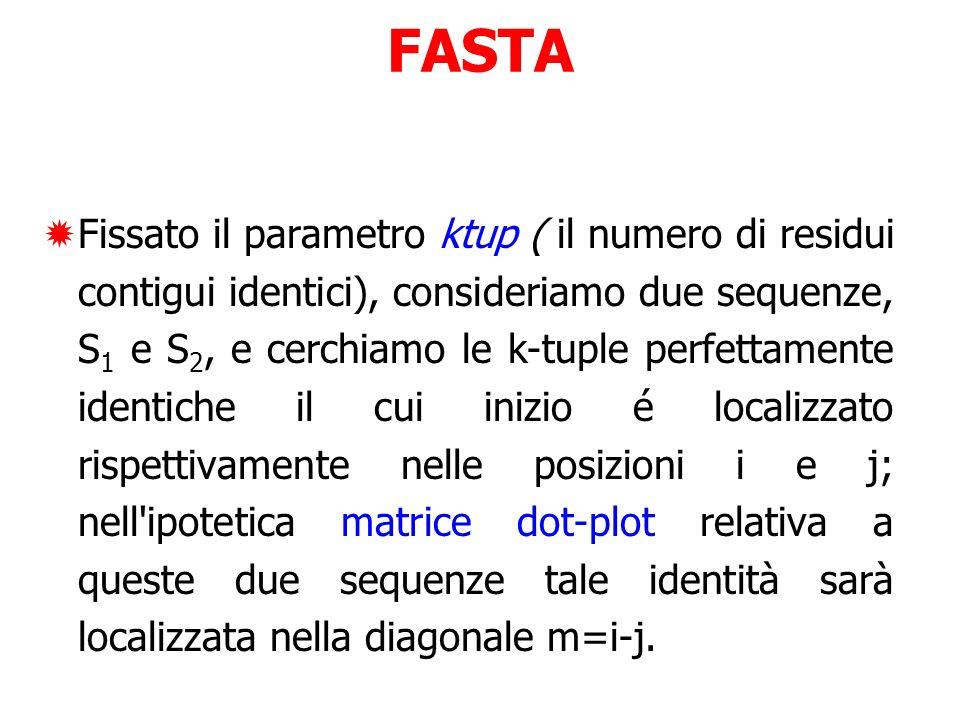 FASTA Fissato il parametro ktup ( il numero di residui contigui identici), consideriamo due sequenze, S 1 e S 2, e cerchiamo le k-tuple perfettamente