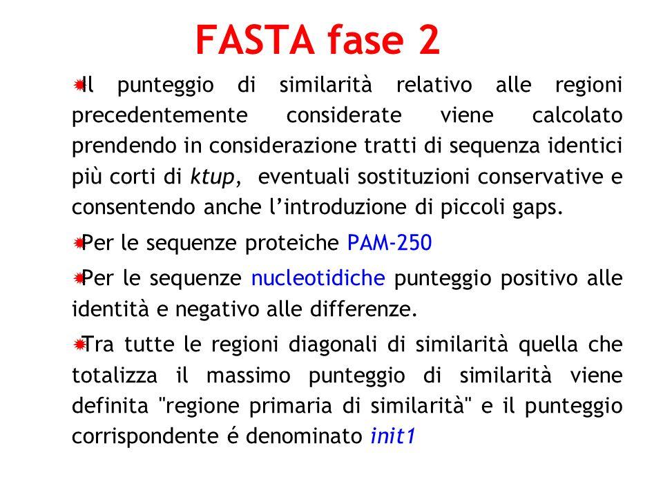 FASTA fase 2 Il punteggio di similarità relativo alle regioni precedentemente considerate viene calcolato prendendo in considerazione tratti di sequen