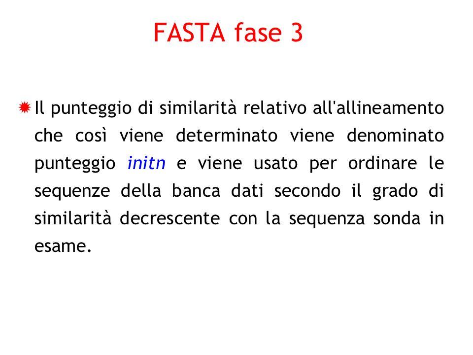 FASTA fase 3 Il punteggio di similarità relativo all'allineamento che così viene determinato viene denominato punteggio initn e viene usato per ordina