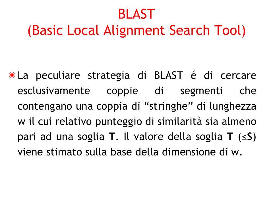 La peculiare strategia di BLAST é di cercare esclusivamente coppie di segmenti che contengano una coppia di stringhe di lunghezza w il cui relativo pu