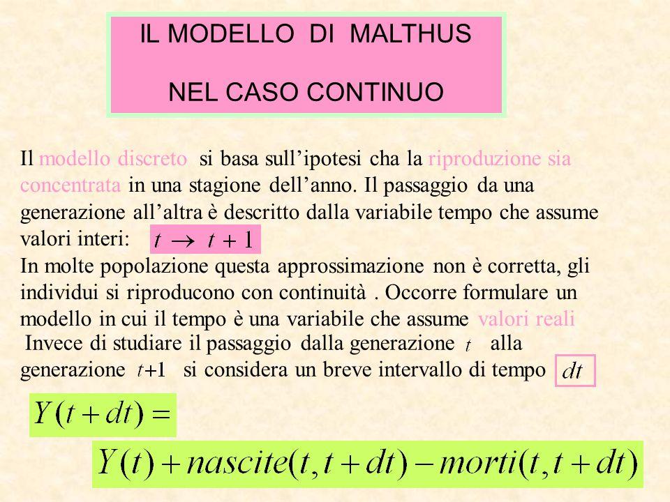IL MODELLO DI MALTHUS NEL CASO CONTINUO Il modello discreto si basa sullipotesi cha la riproduzione sia concentrata in una stagione dellanno. Il passa