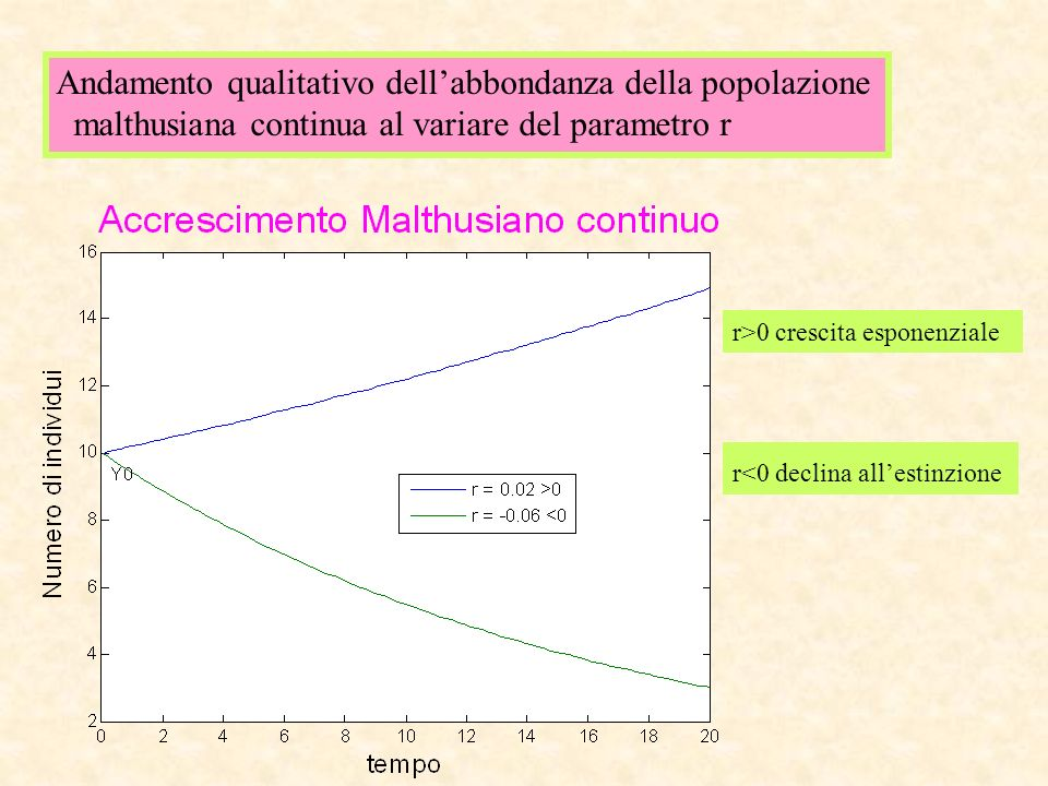 Andamento qualitativo dellabbondanza della popolazione malthusiana continua al variare del parametro r r>0 crescita esponenziale r<0 declina allestinz