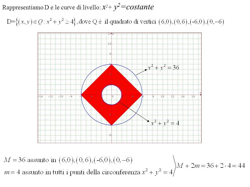 Rappresentiamo D e le curve di livello: x 2 + y 2 =costante