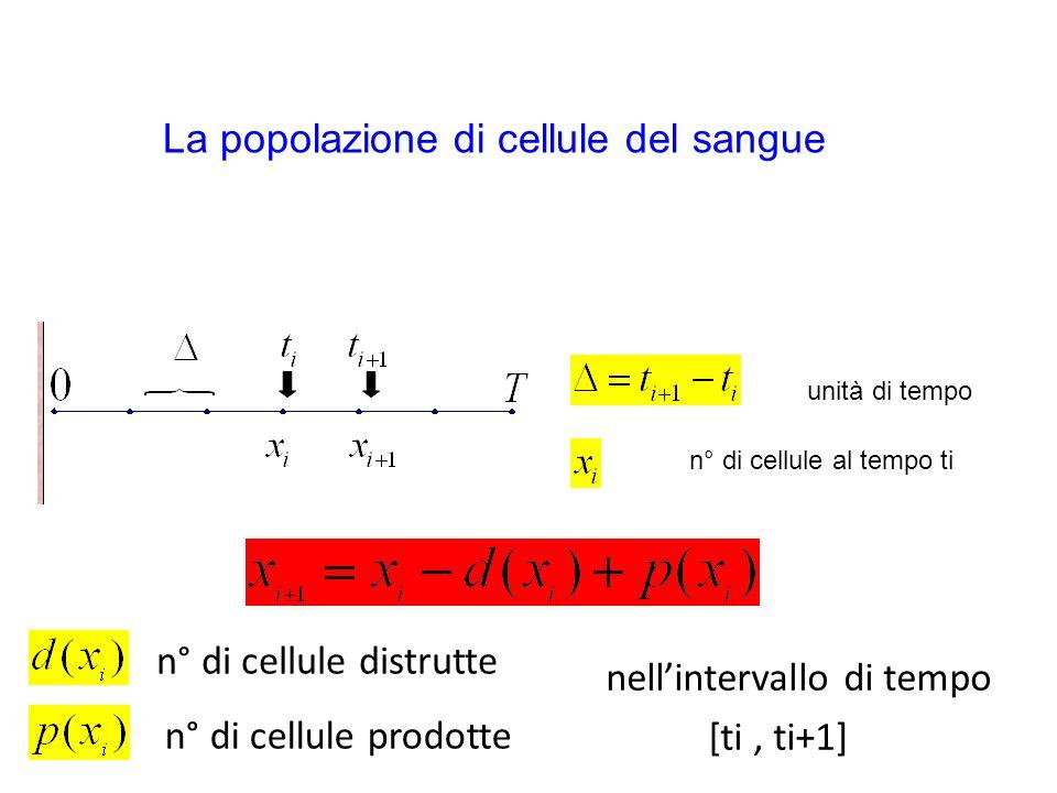 unità di tempo n° di cellule al tempo ti La popolazione di cellule del sangue n° di cellule distrutte n° di cellule prodotte nellintervallo di tempo [ti, ti+1]