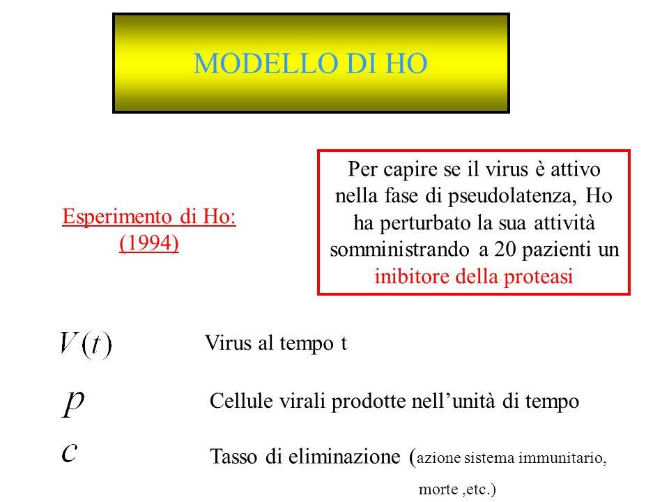 MODELLO DI HO Esperimento di Ho: (1994) Per capire se il virus è attivo nella fase di pseudolatenza, Ho ha perturbato la sua attività somministrando a
