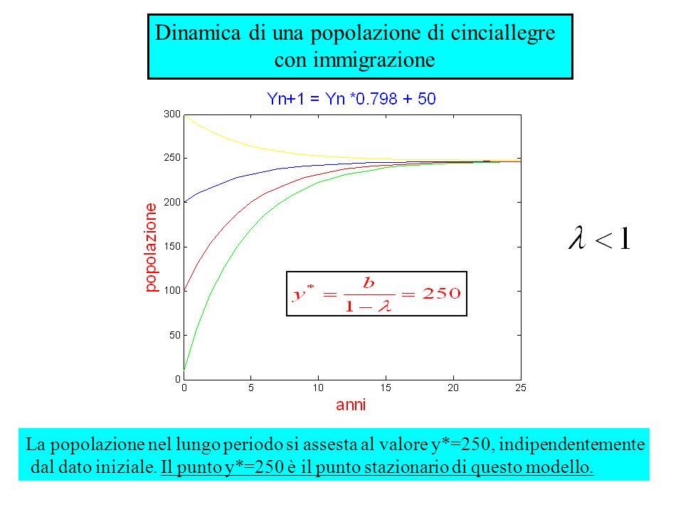 Dinamica di una popolazione di cinciallegre con immigrazione La popolazione nel lungo periodo si assesta al valore y*=250, indipendentemente dal dato
