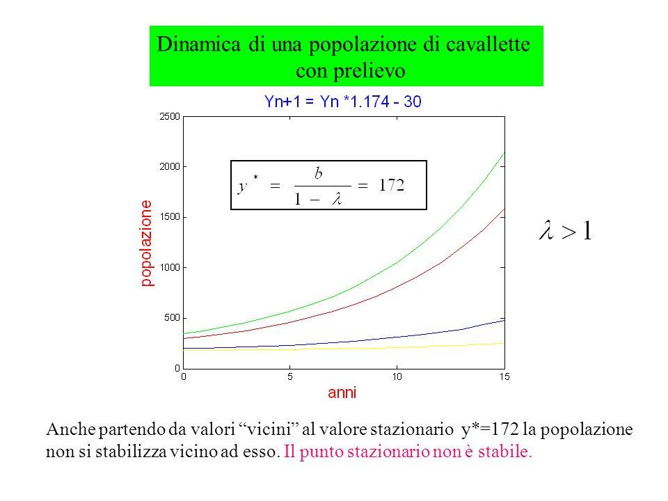 Dinamica di una popolazione di cavallette con prelievo Anche partendo da valori vicini al valore stazionario y*=172 la popolazione non si stabilizza vicino ad esso.
