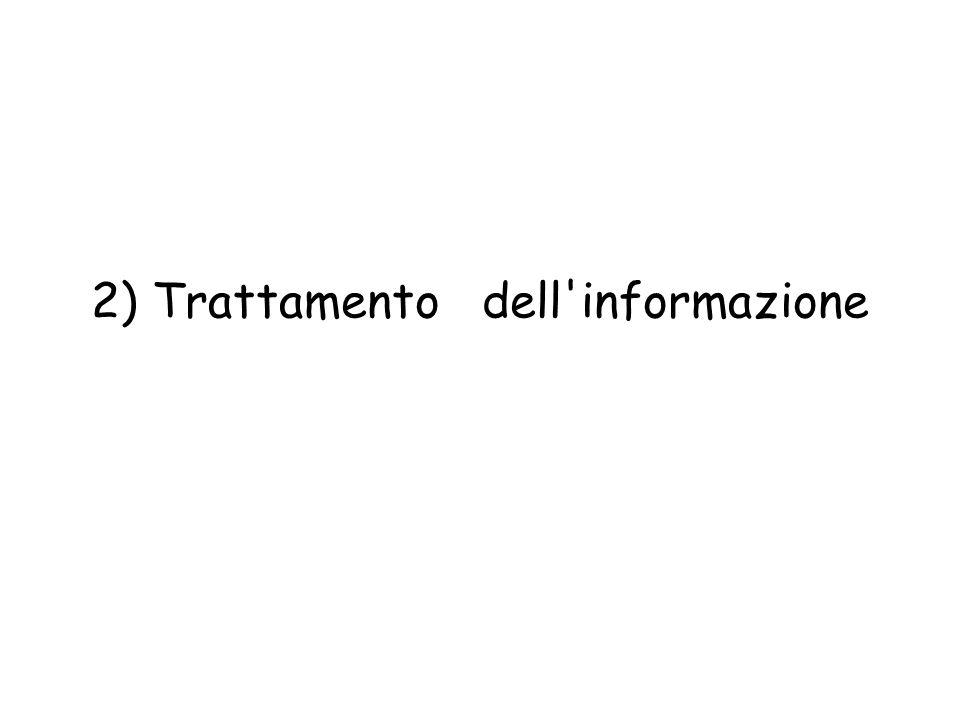 2) Trattamento dell informazione