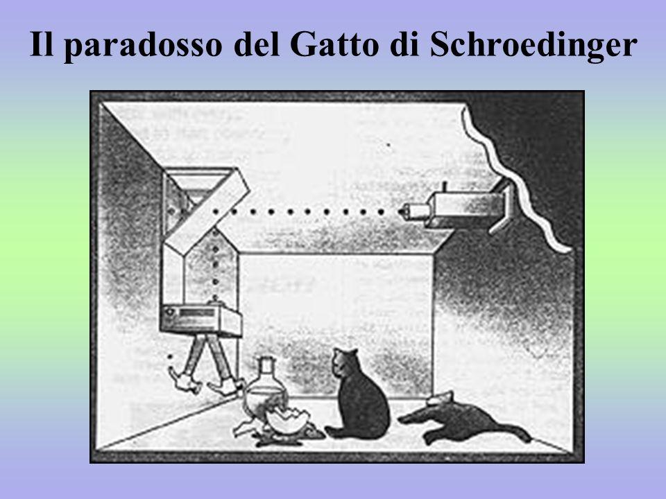 Il paradosso del Gatto di Schroedinger