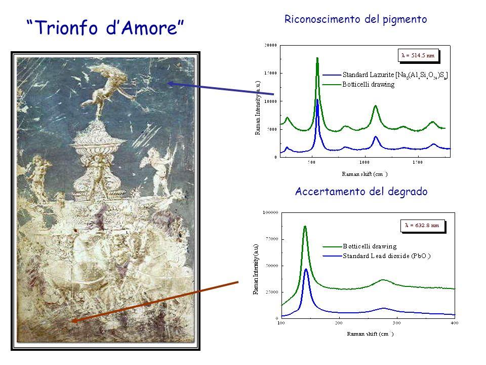 Trionfo dAmore Riconoscimento del pigmento Accertamento del degrado