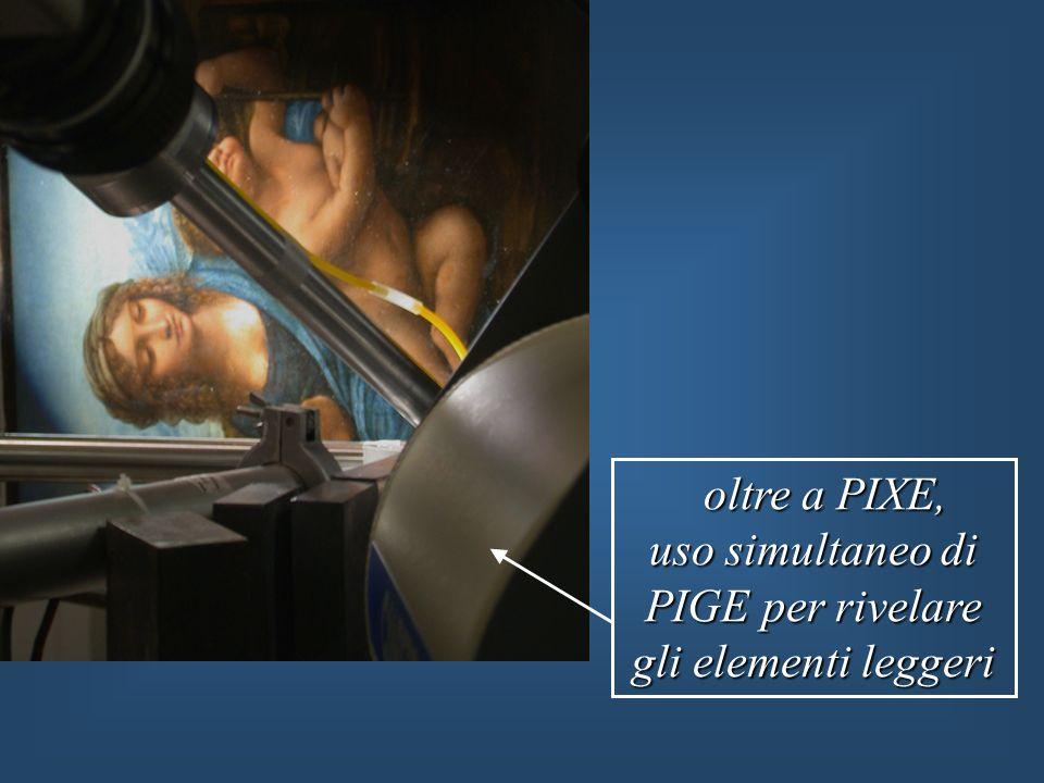 oltre a PIXE, oltre a PIXE, uso simultaneo di PIGE per rivelare gli elementi leggeri