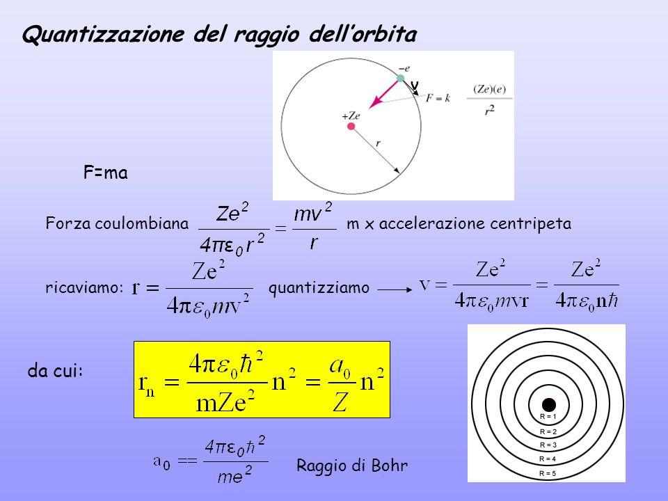 F=ma Forza coulombianam x accelerazione centripeta v ricaviamo: Raggio di Bohr da cui: Quantizzazione del raggio dellorbita quantizziamo