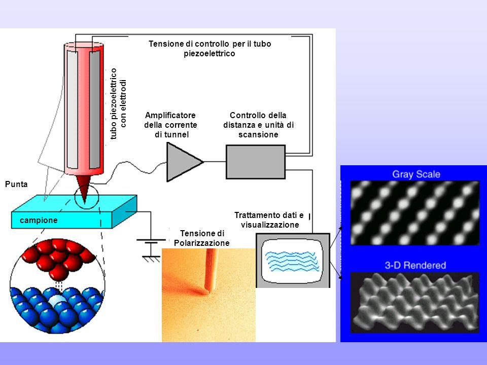 Tensione di Polarizzazione Trattamento dati e visualizzazione campione Punta Tensione di controllo per il tubo piezoelettrico tubo piezoelettrico con