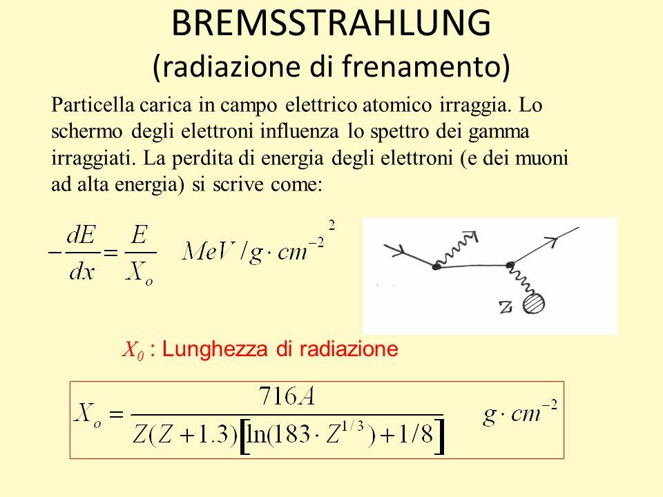 BREMSSTRAHLUNG (radiazione di frenamento) Particella carica in campo elettrico atomico irraggia.
