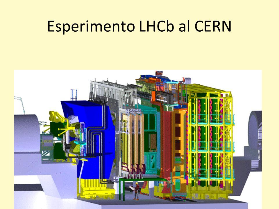 Perdita di Energia per ionizzazione Formula di Bethe-Bloch Rivelatore STAR (TPC) a RHIC (BNL)