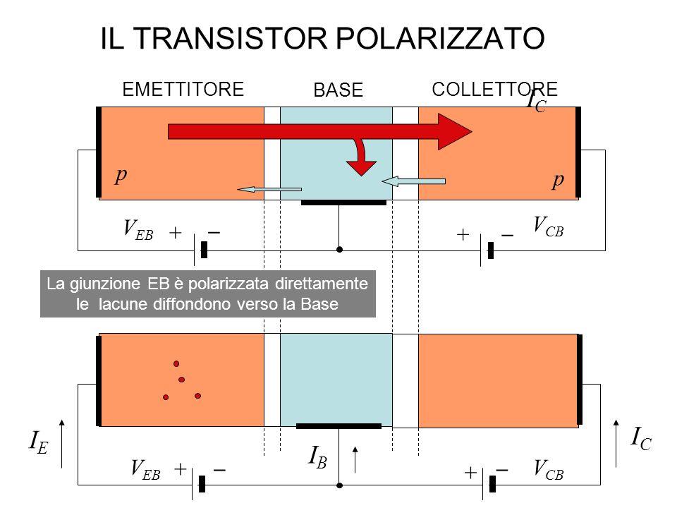 IL TRANSISTOR POLARIZZATO EMETTITORE BASE COLLETTORE p p n La giunzione EB è polarizzata direttamente le lacune diffondono verso la Base ICIC IBIB IEI