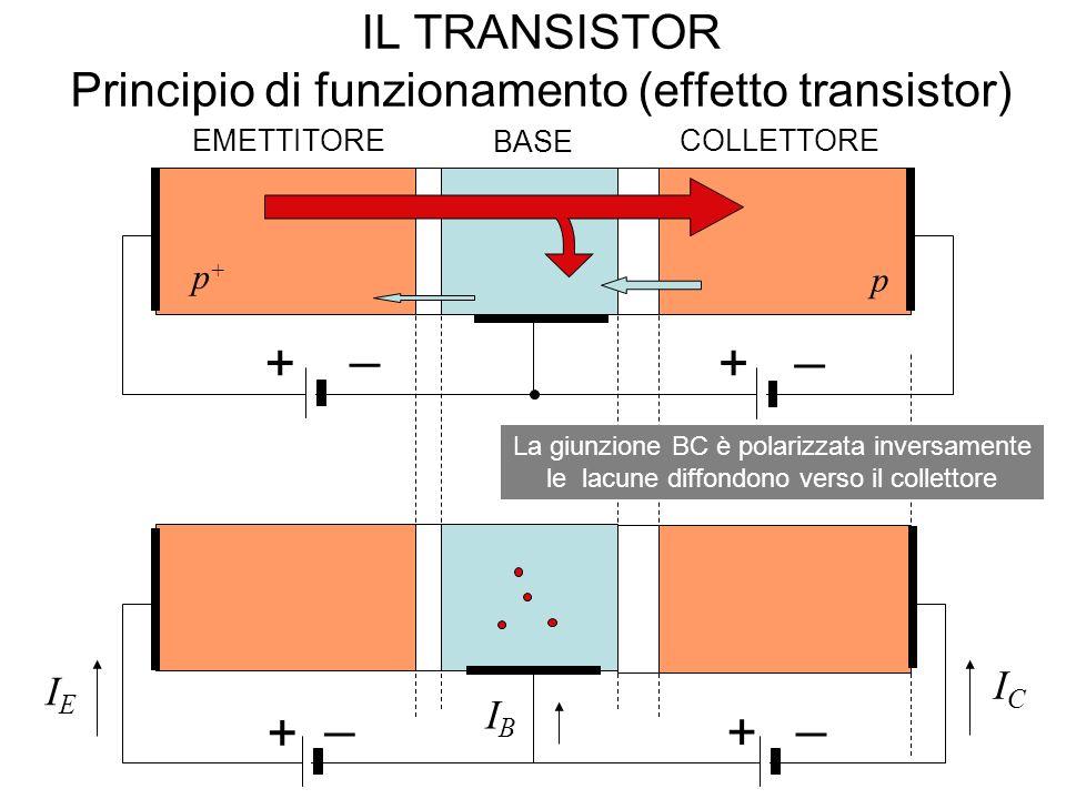 IL TRANSISTOR Principio di funzionamento (effetto transistor) EMETTITORE BASE COLLETTORE p+p+ p n La giunzione BC è polarizzata inversamente le lacune