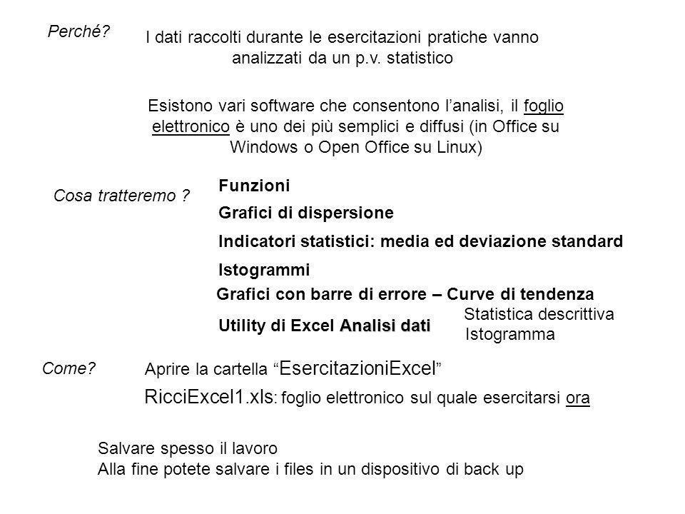I fogli elettronici Funzioni StatDescrittiva Istogramma Grafici x-y Sono predisposti per lesercitazione su ciascuno degli argomenti Mettetevi nel foglio Funzioni Nel file xls sono presenti più fogli elettronici.