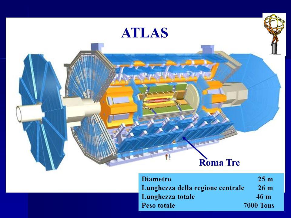 Diametro25 m Lunghezza della regione centrale26 m Lunghezza totale 46 m Peso totale 7000 Tons ATLAS Roma Tre