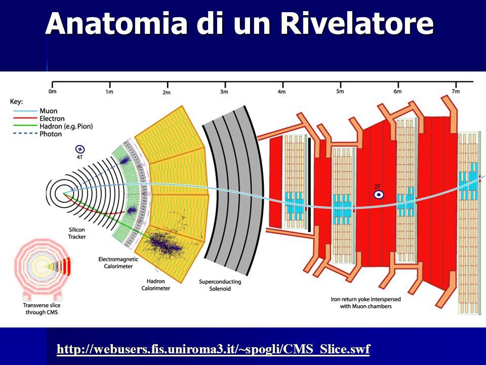 Anatomia di un Rivelatore http://webusers.fis.uniroma3.it/~spogli/CMS_Slice.swf