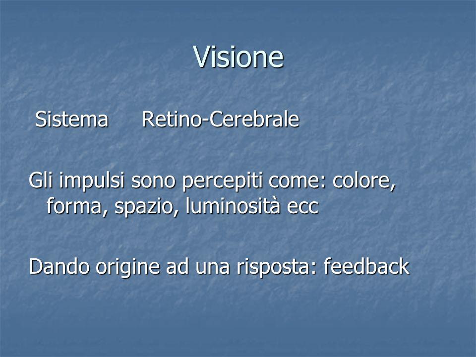 Visione Sistema Retino-Cerebrale Sistema Retino-Cerebrale Gli impulsi sono percepiti come: colore, forma, spazio, luminosità ecc Dando origine ad una
