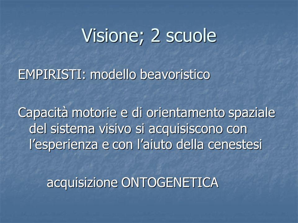 Visione; 2 scuole EMPIRISTI: modello beavoristico Capacità motorie e di orientamento spaziale del sistema visivo si acquisiscono con lesperienza e con
