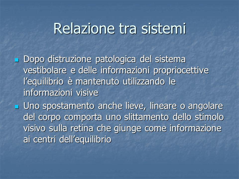 Relazione tra sistemi Dopo distruzione patologica del sistema vestibolare e delle informazioni propriocettive lequilibrio è mantenuto utilizzando le i