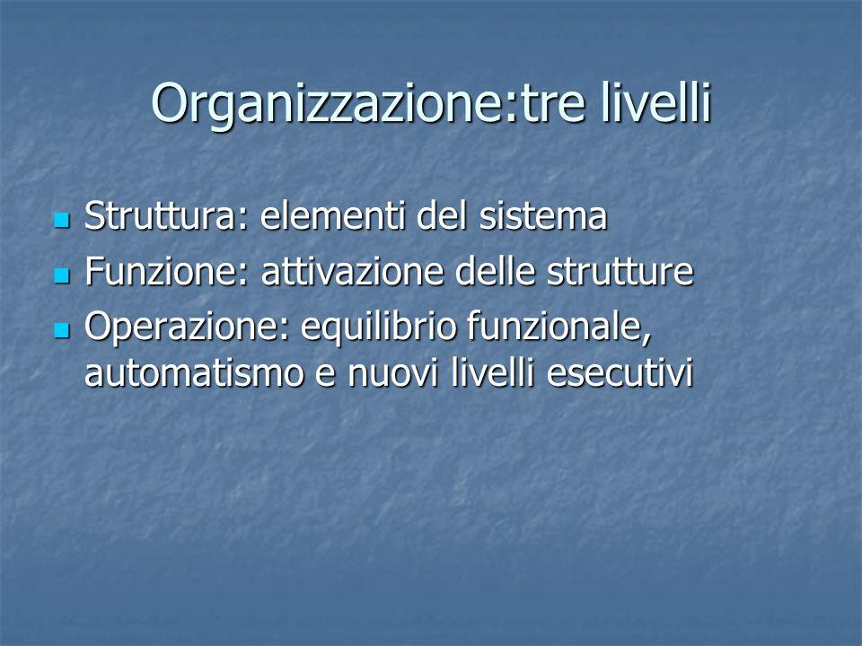 Organizzazione:tre livelli Struttura: elementi del sistema Struttura: elementi del sistema Funzione: attivazione delle strutture Funzione: attivazione