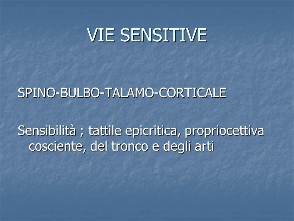 VIE SENSITIVE SPINO-BULBO-TALAMO-CORTICALE Sensibilità ; tattile epicritica, propriocettiva cosciente, del tronco e degli arti