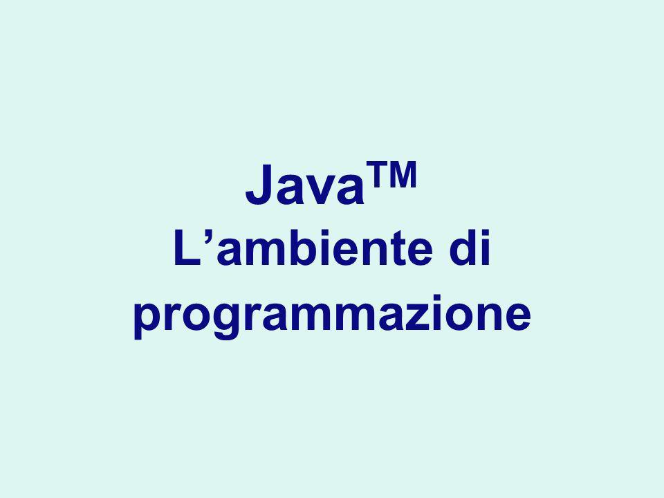 Java TM Lambiente di programmazione