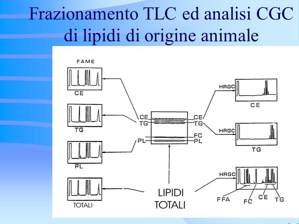 Frazionamento TLC ed analisi CGC di lipidi di origine animale
