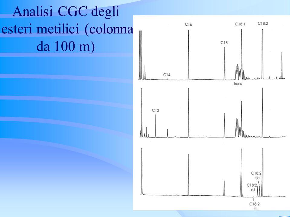 Analisi CGC degli esteri metilici (colonna da 100 m)