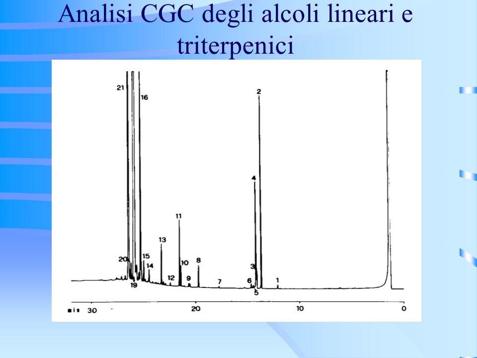 Analisi CGC degli alcoli lineari e triterpenici