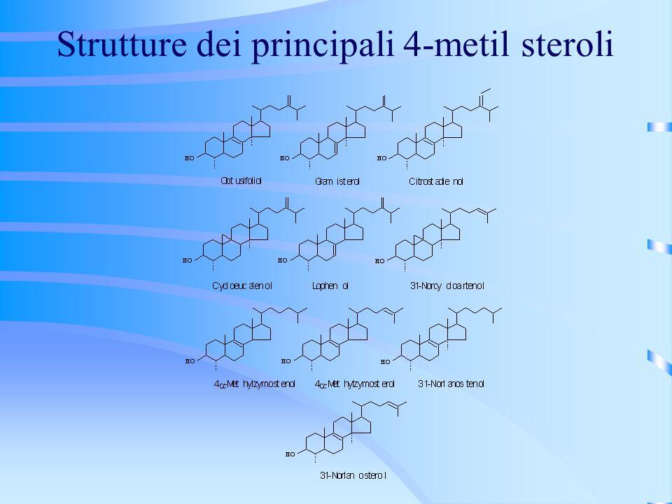 Strutture dei principali 4-metil steroli