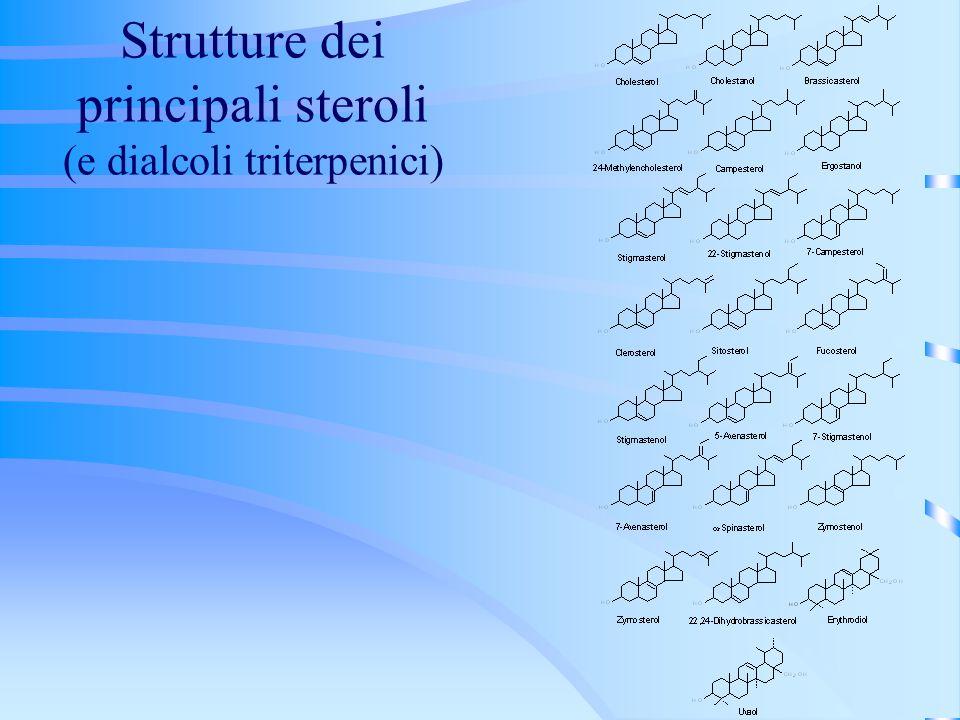 Strutture dei principali steroli (e dialcoli triterpenici)
