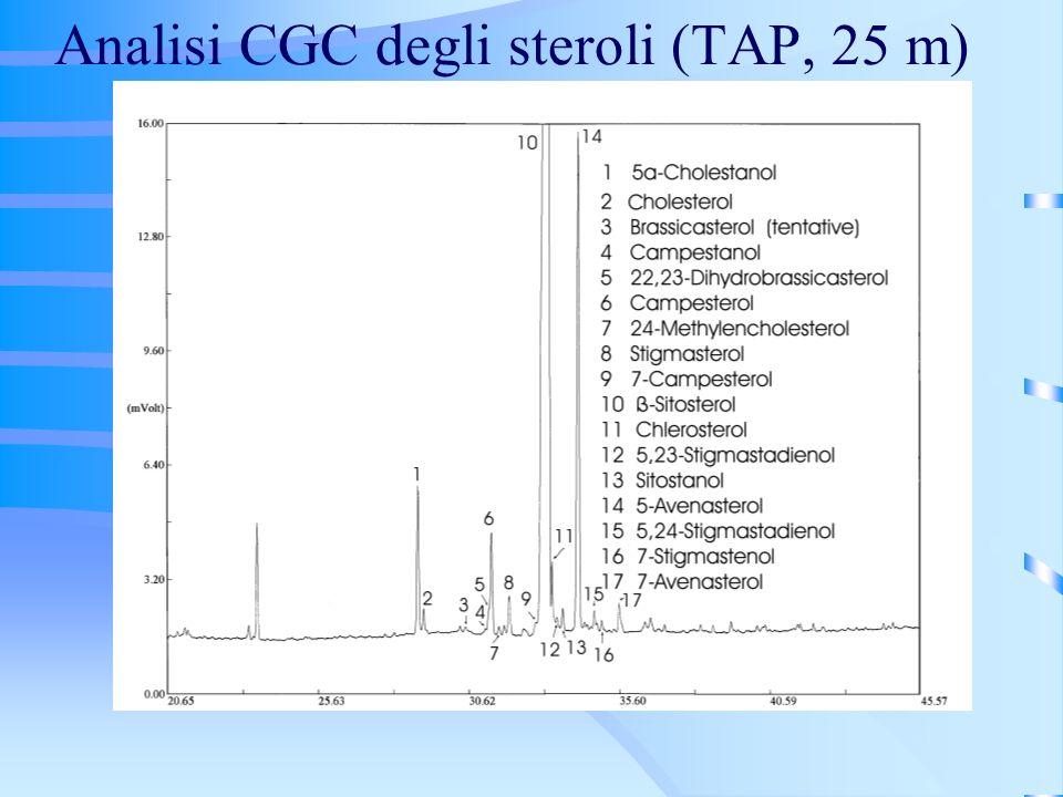 Analisi CGC degli steroli (TAP, 25 m)